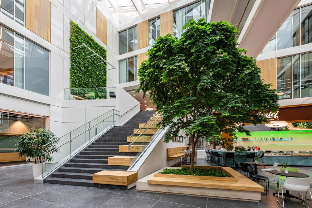 Mobilane Livepanel Greenwall