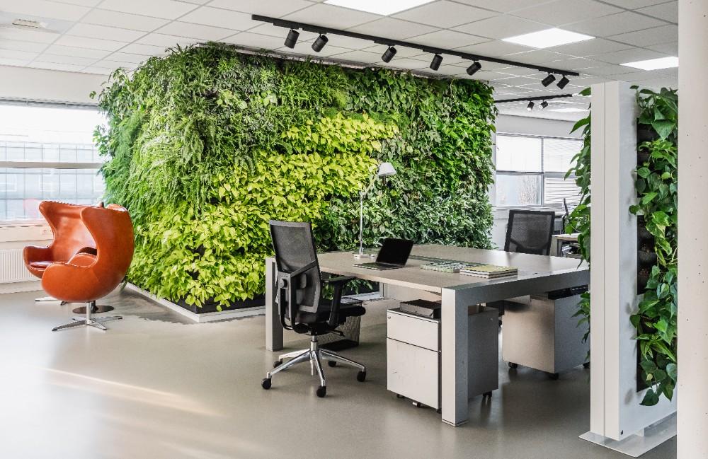 Grünpflanzen in Büros verbessern das Raumklima durch Sauerstoffproduktion und Feinstaubbindung. Abbildung: Mobilane