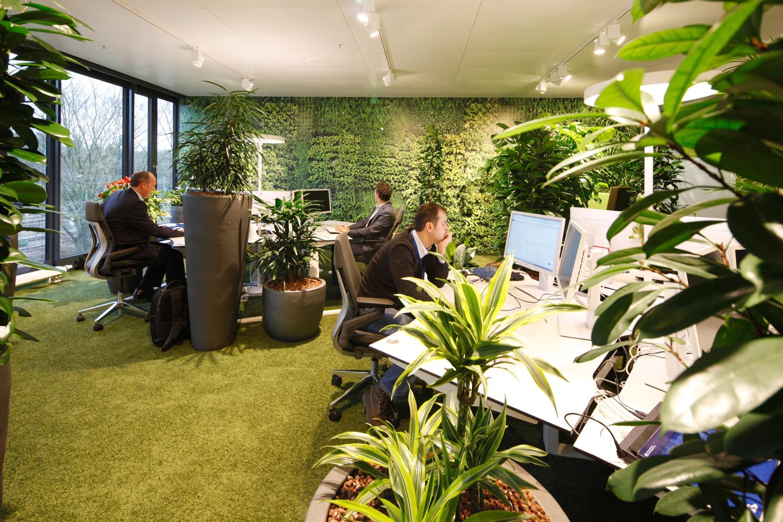 evolution design abwechslungsreiches b rokonzept f r teambank n rnberg office roxx. Black Bedroom Furniture Sets. Home Design Ideas