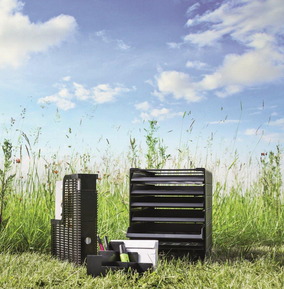 Green Office: Tipps für das umweltfreundliche Büro