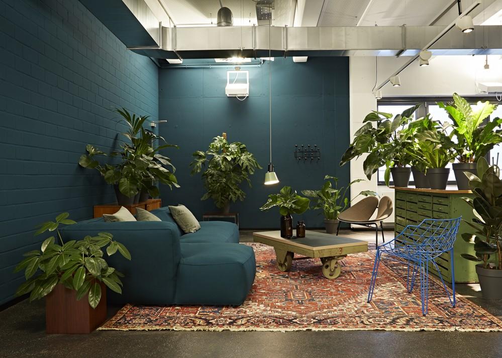 Dschungel zum Entspannen und Ideentanken.