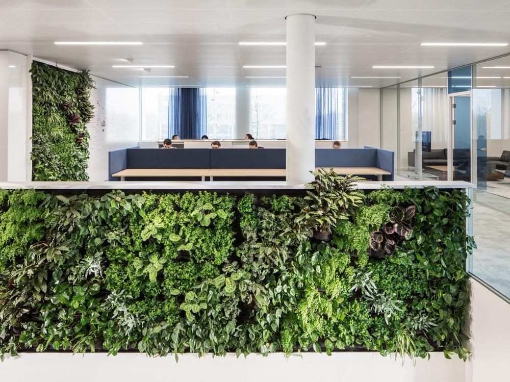 Gesundes Grün: Büro mit Pflanzenwänden, Hubs und Cafébars