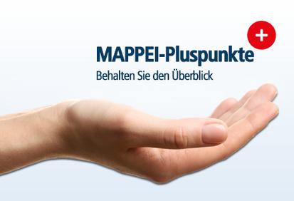 Mit der MAPPEI-Methode behalten Sie den Überblick, gewinnen Zeit und Raum und reduzieren Kosten.