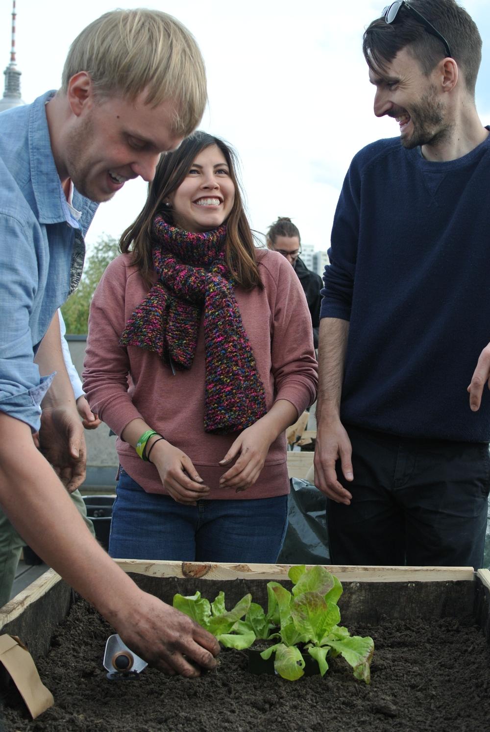 Gemeinsames Anpflanzen und Ernten kann den Teamgeist erhöhen. Abbildung: Ackerpause