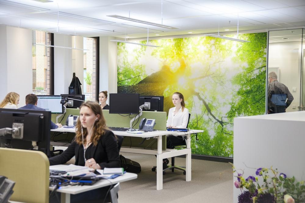 In Büroumgebungen sorgt Human Centric Lighting (HCL) für Wohlbefinden bei den Mitarbeitern. Abbildung: licht.de/Osram