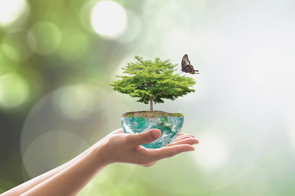 Eine nachhaltige Zukunft fängt schon heute an. Dazu verwendet Preform ausschließlich ökologisch unbedenkliche Materialien. Abbildung: Preform
