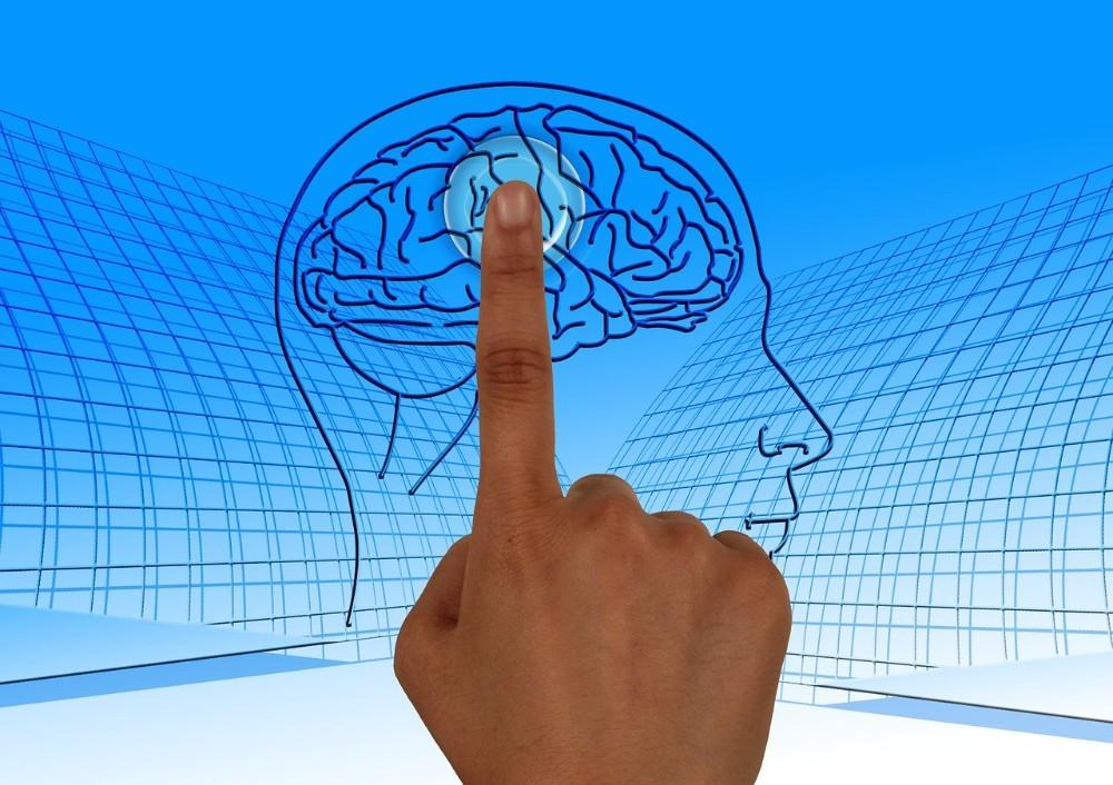 Die Leistungsfähigkeit unseres Gehirns ist abhängig von unserem Stresslevel. Abbildung: Gerd Altmann, Pixabay