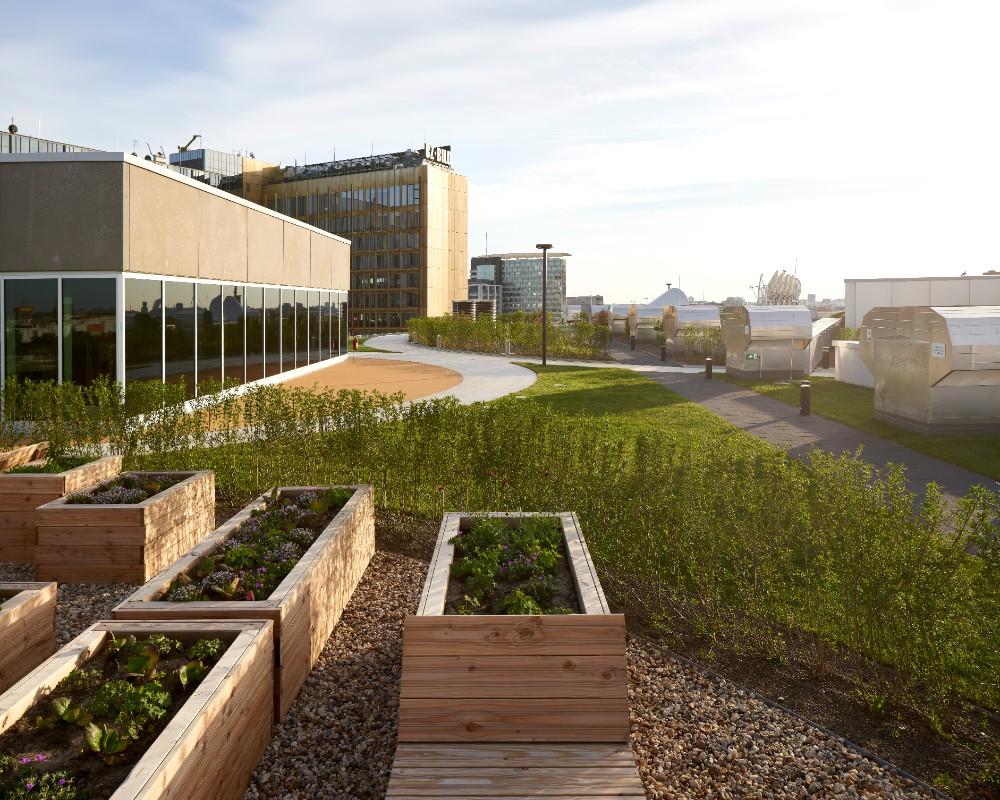 Urban Gardening auf der Dachterrasse mit Hochbeeten für Gemüse und Kräuter. Abbildung: Nils Koenning, Axel Springer, OMA